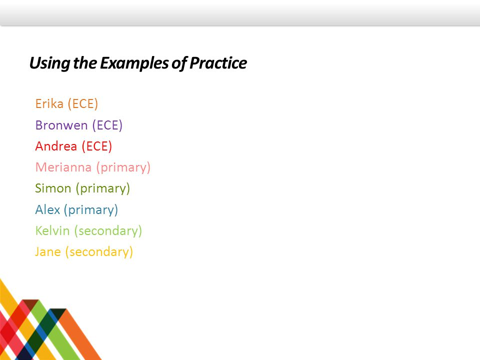 Using the Examples of Practice