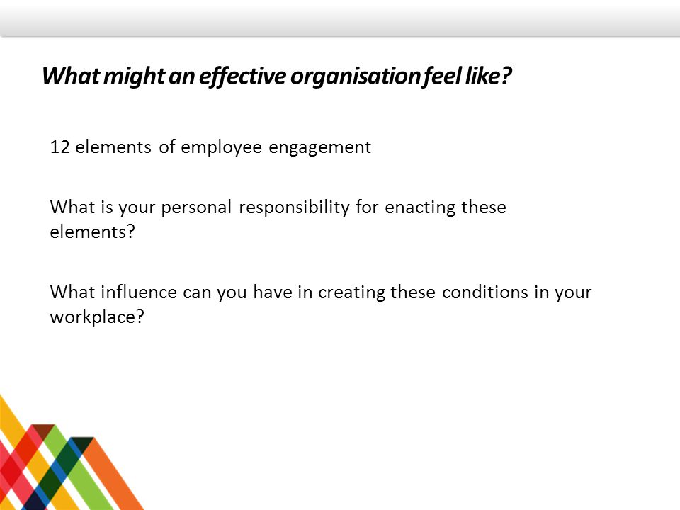 What might an effective organisation feel like