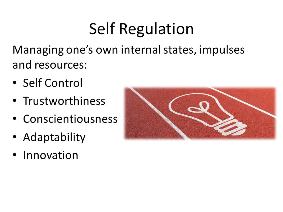 Self Regulation Managing one's own internal states, impulses and resources: Self Control. Trustworthiness.