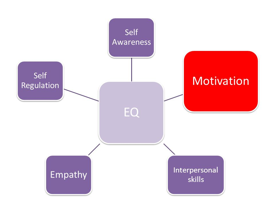 EQ Motivation Empathy Self Awareness Self Regulation