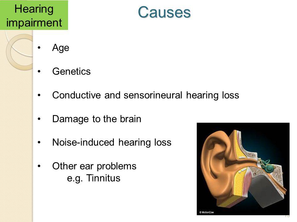 Causes Hearing impairment Age Genetics