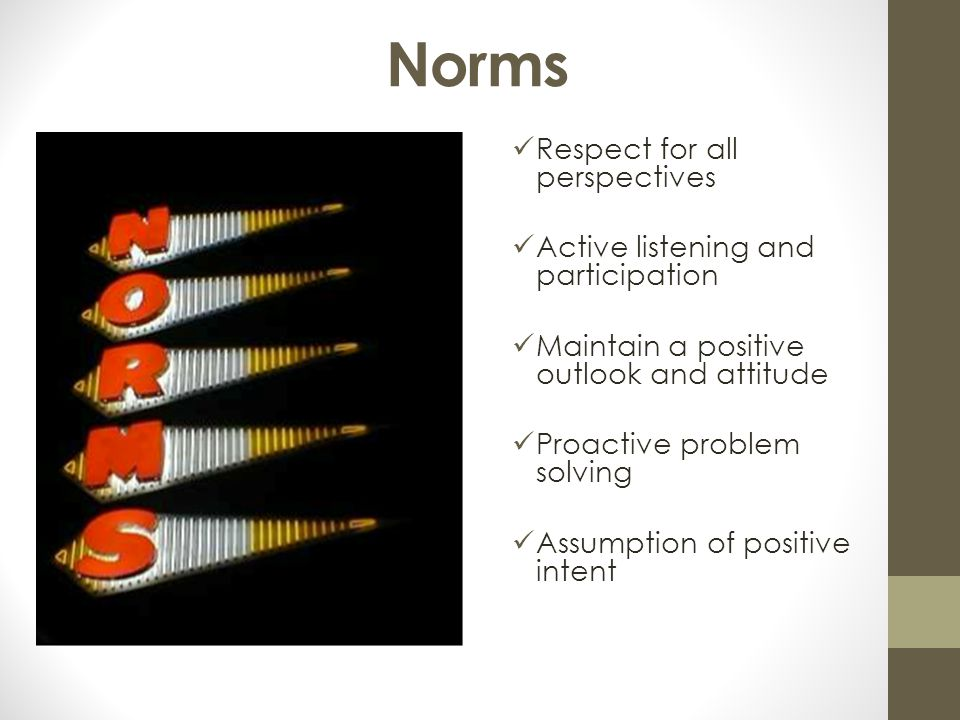 Norms Respect for all perspectives Active listening and participation
