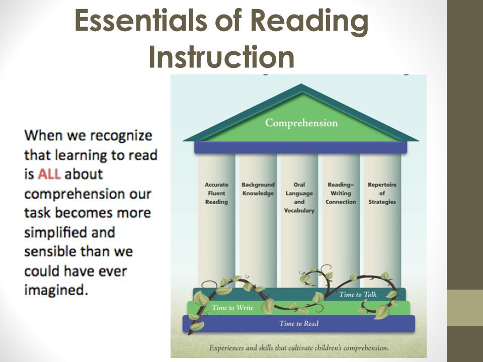 Essentials of Reading Instruction