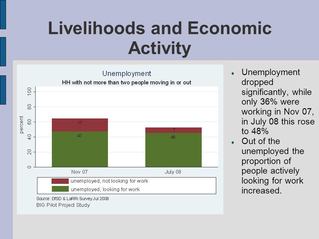 Livelihoods and Economic Activity