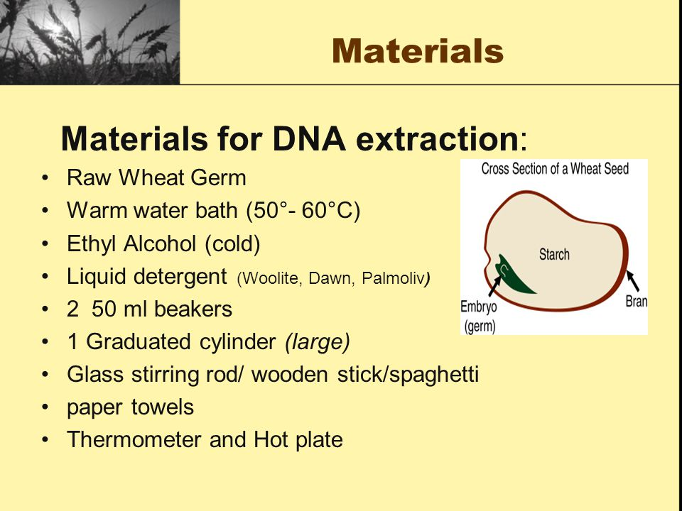 Materials for DNA extraction: