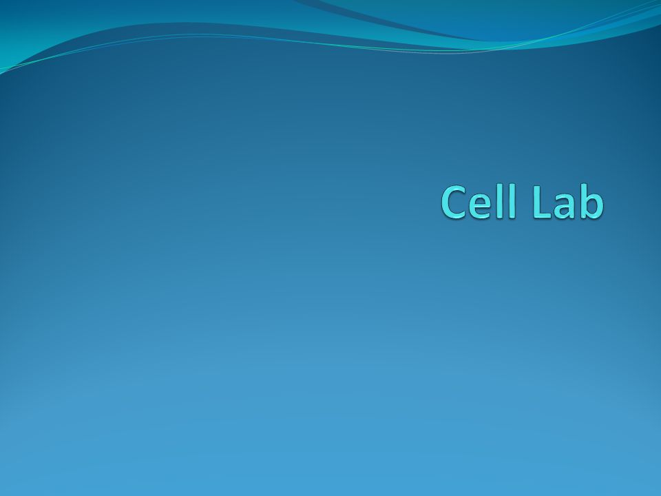 Cell Lab