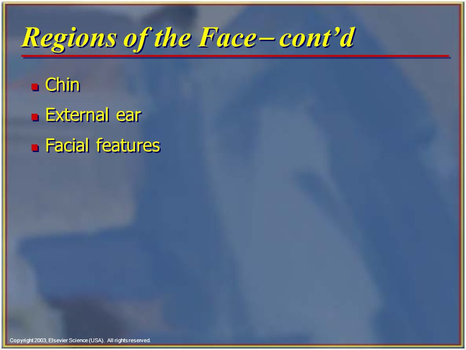 Regions of the Face- cont'd