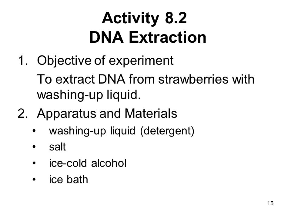 Activity 8.2 DNA Extraction