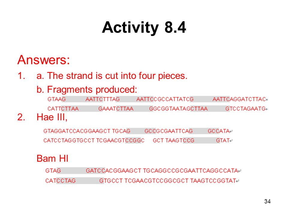 Activity 8.4 Answers: a. The strand is cut into four pieces.