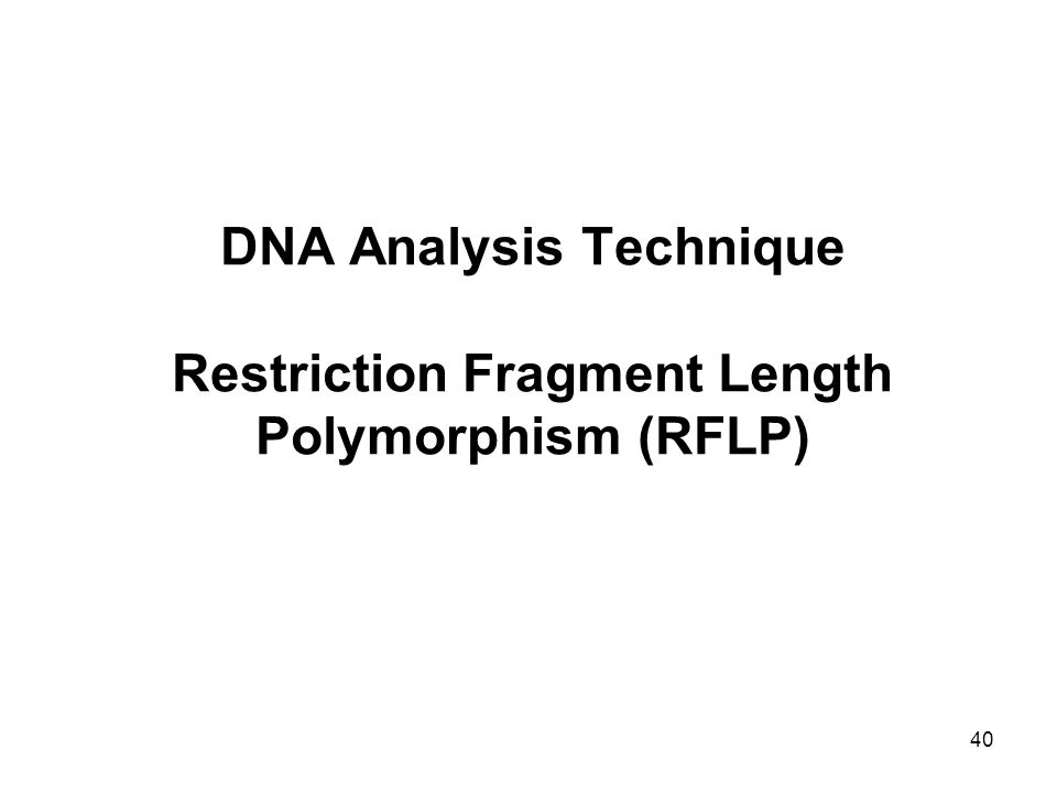DNA Analysis Technique Restriction Fragment Length Polymorphism (RFLP)
