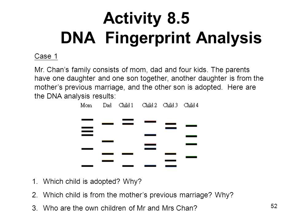 dna fingerprinting worksheet bluegreenish. Black Bedroom Furniture Sets. Home Design Ideas