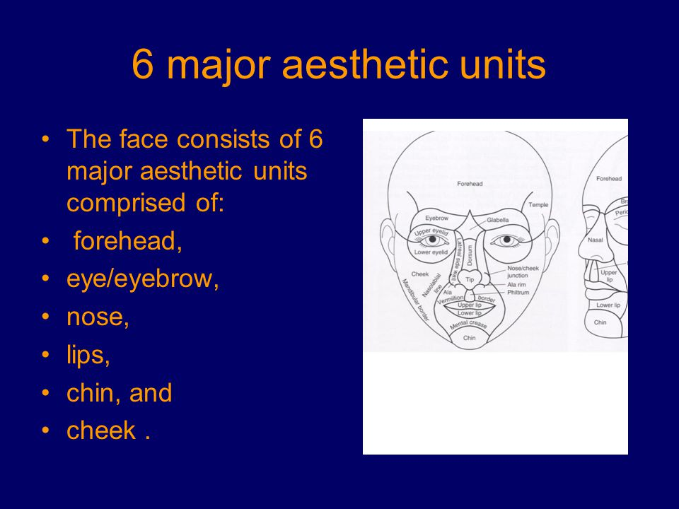 6 major aesthetic units The face consists of 6 major aesthetic units comprised of: forehead, eye/eyebrow,