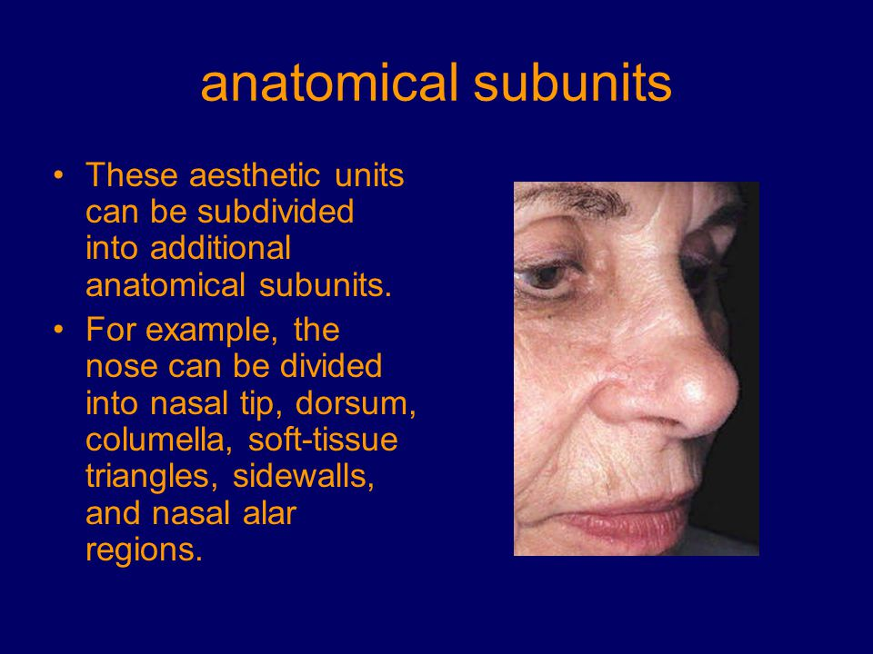 anatomical subunits These aesthetic units can be subdivided into additional anatomical subunits.