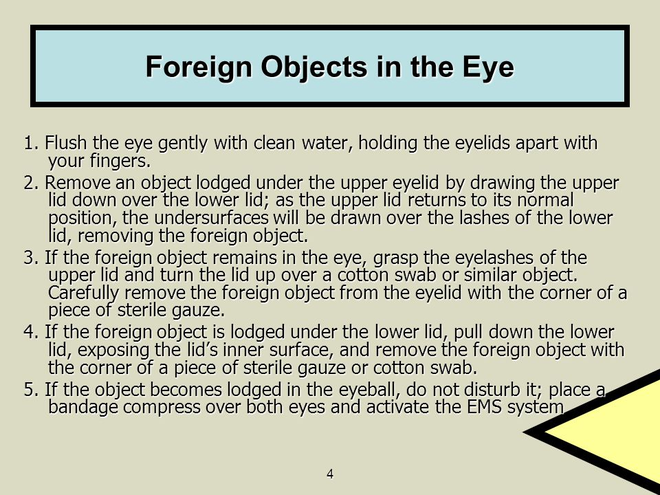 Foreign Objects in the Eye