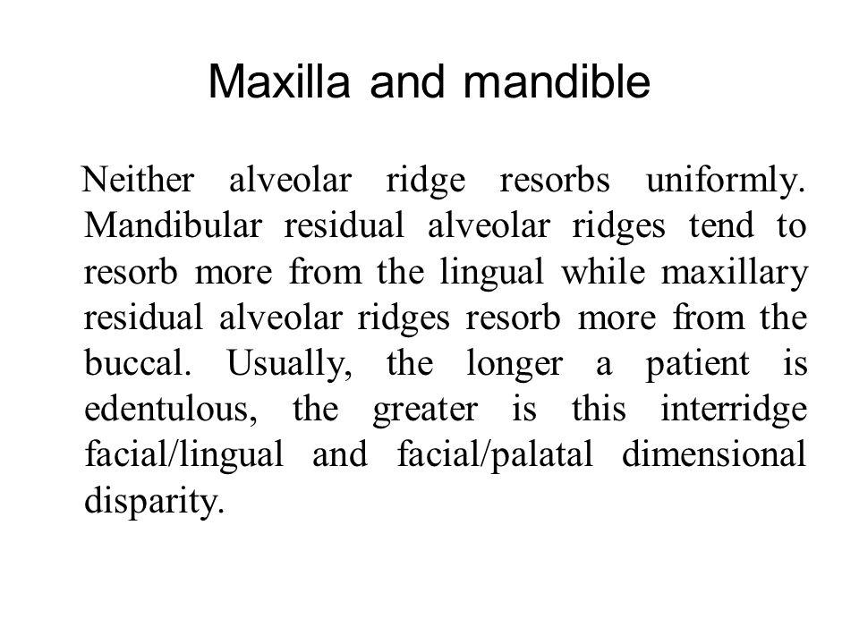 Maxilla and mandible