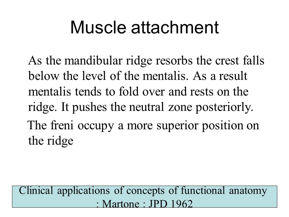 Clinical applications of concepts of functional anatomy