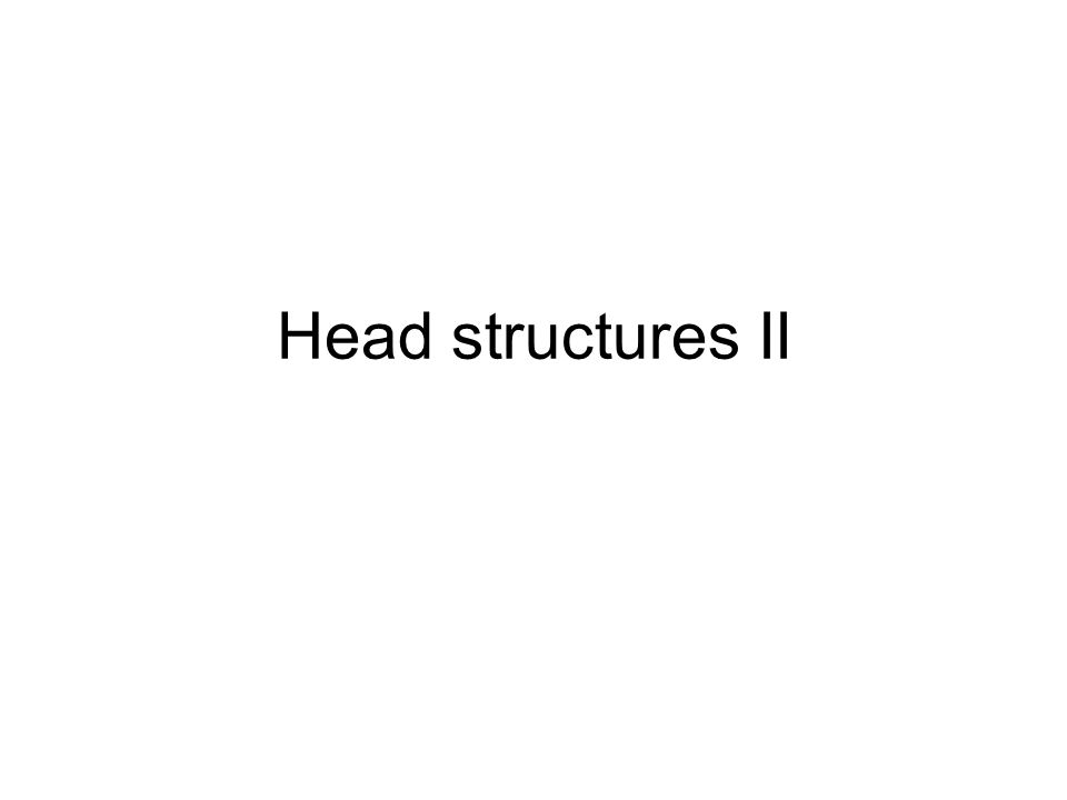 Head structures II
