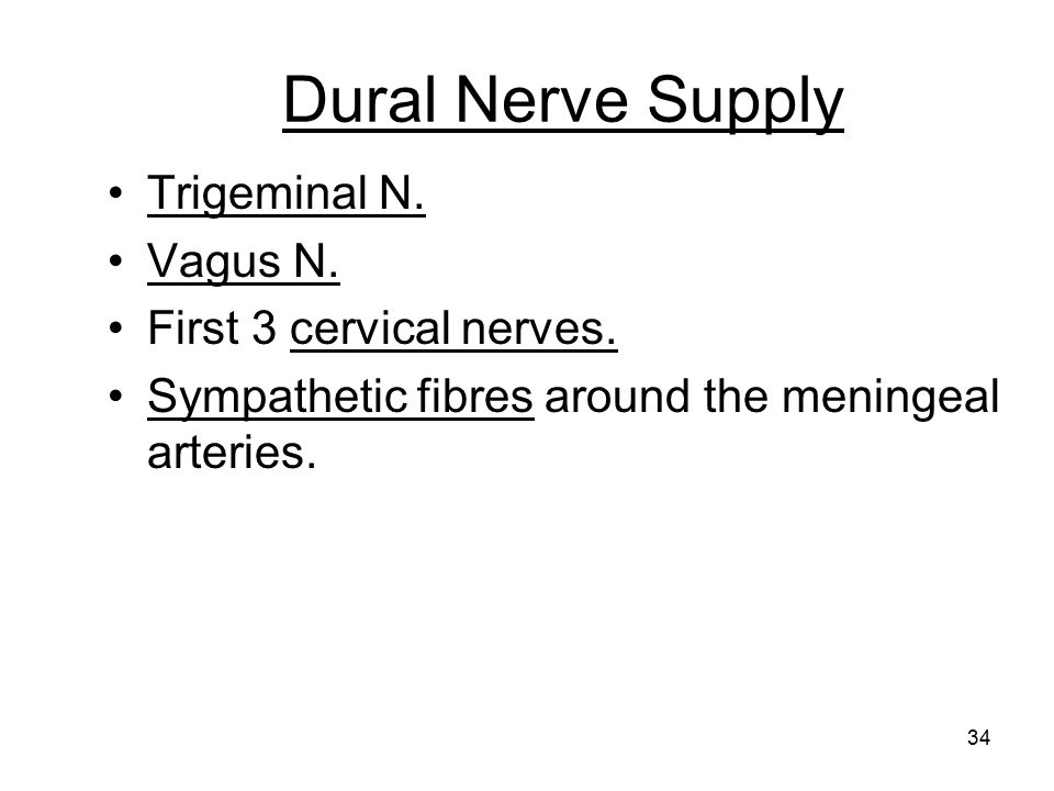Dural Nerve Supply Trigeminal N. Vagus N. First 3 cervical nerves.
