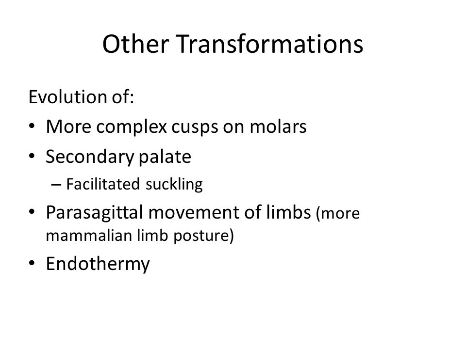 Other Transformations