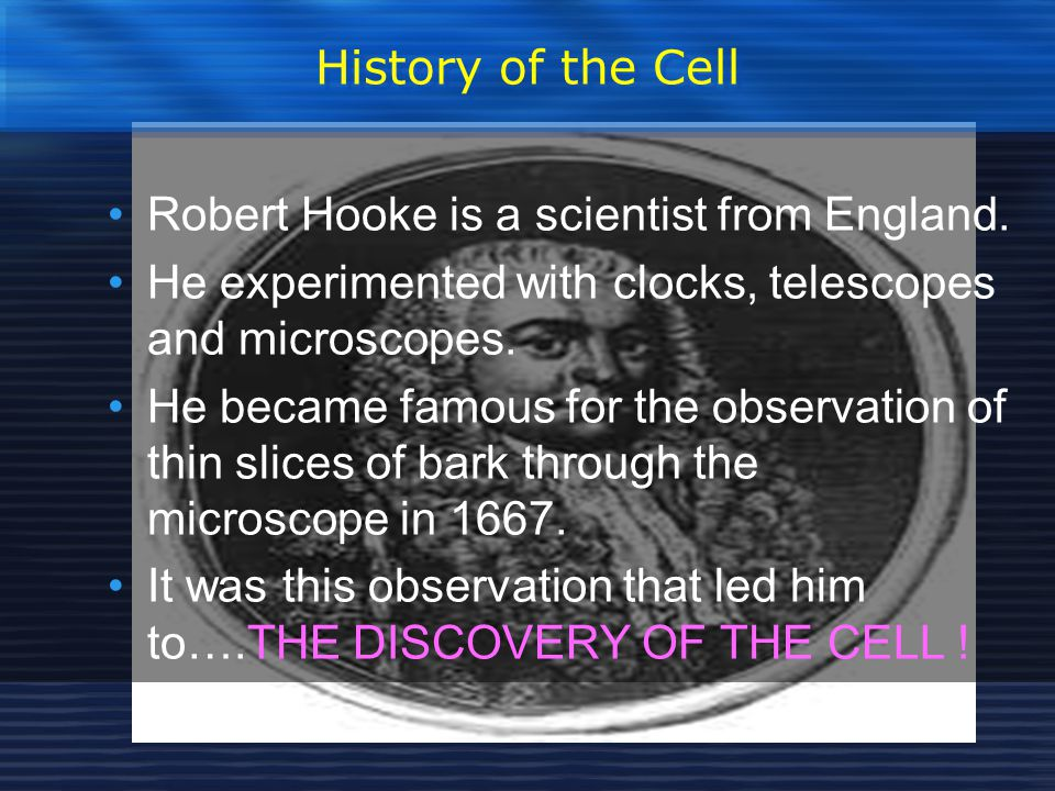 History of the Cell Robert Hooke is a scientist from England. He experimented with clocks, telescopes and microscopes.