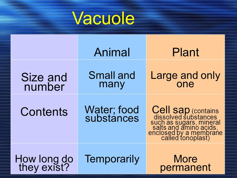 Water; food substances