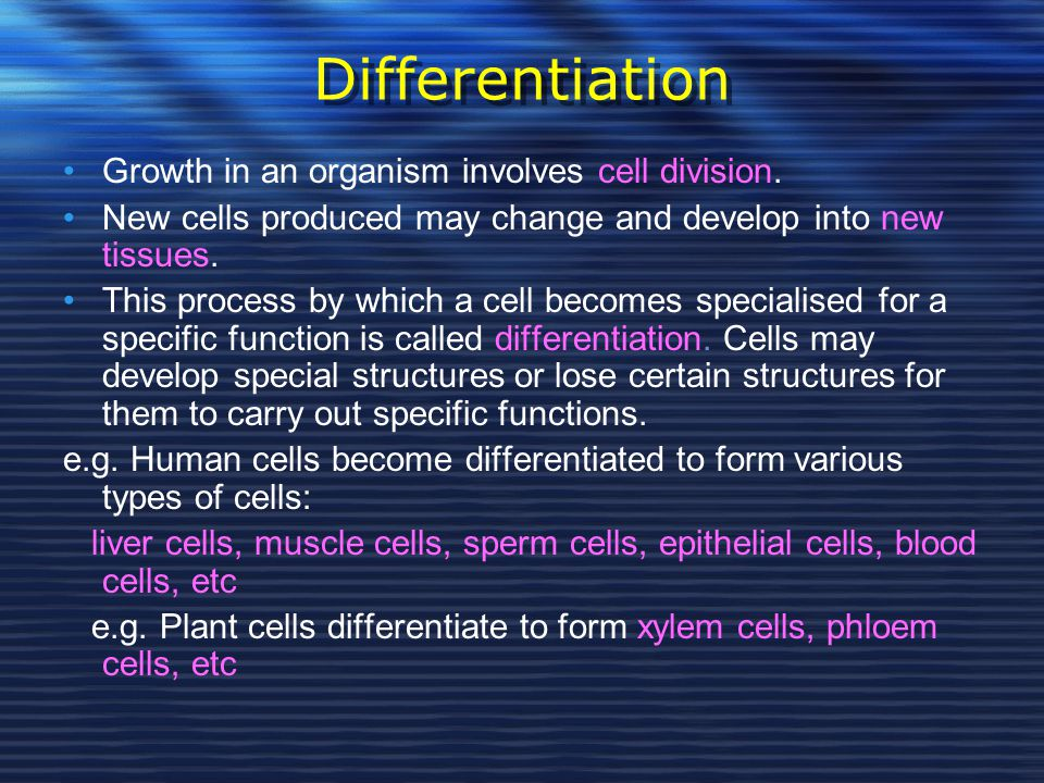 Differentiation Growth in an organism involves cell division.