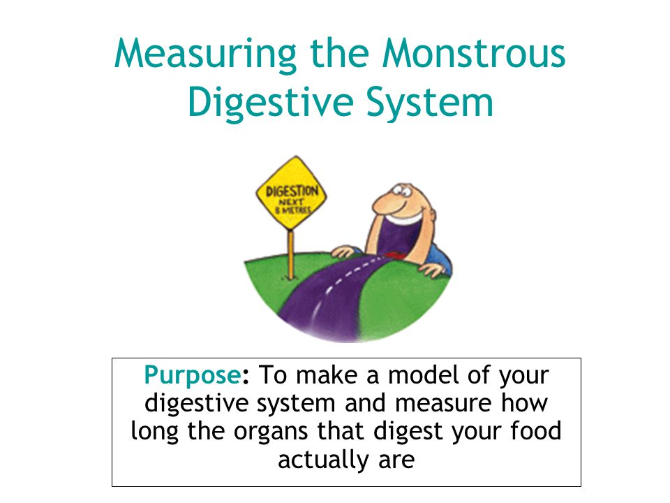Measuring the Monstrous Digestive System