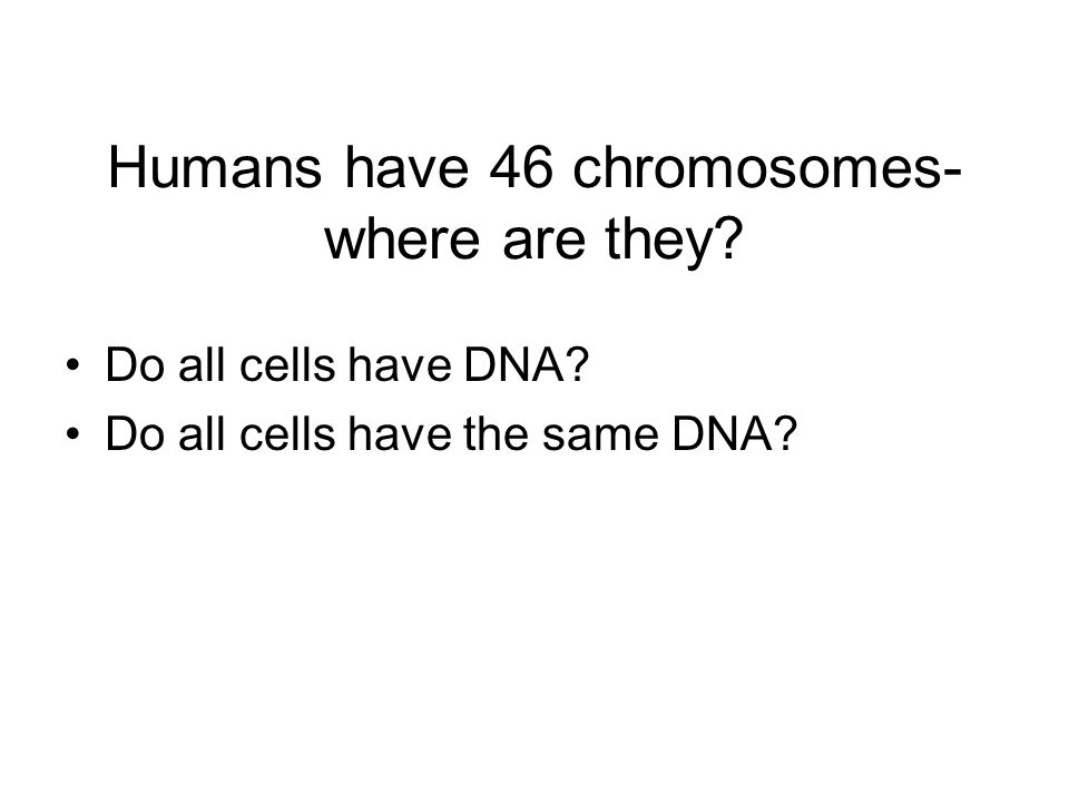 Humans have 46 chromosomes- where are they