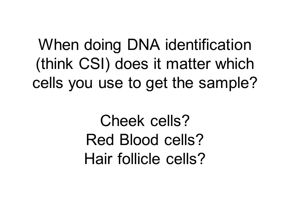 When doing DNA identification (think CSI) does it matter which cells you use to get the sample.