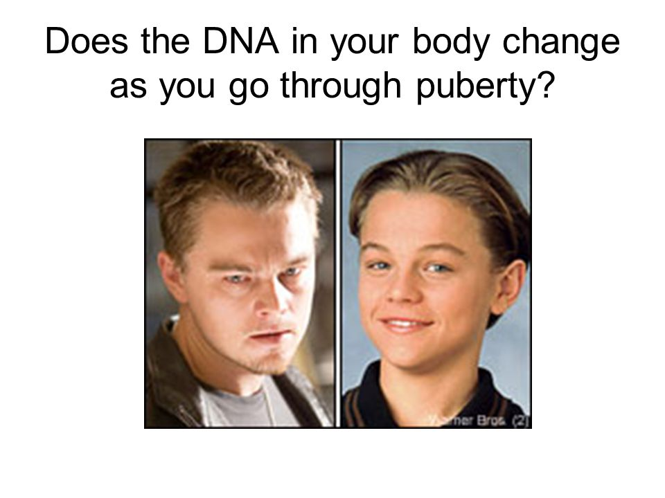 Does the DNA in your body change as you go through puberty