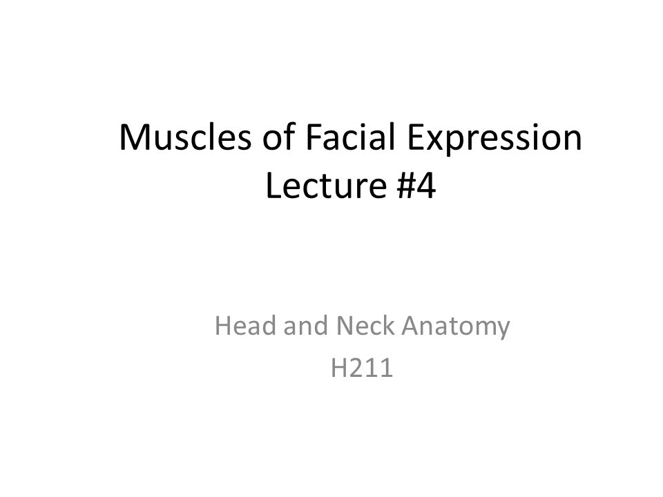 Muscles of Facial Expression Lecture #4 - ppt video online download