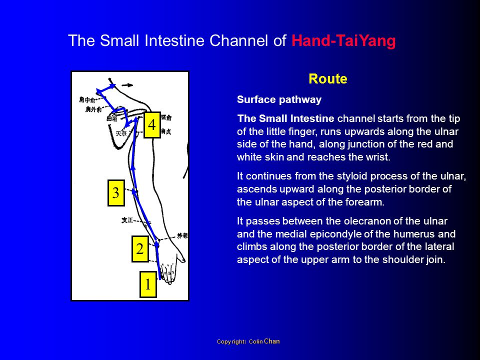The Small Intestine Channel of Hand-TaiYang