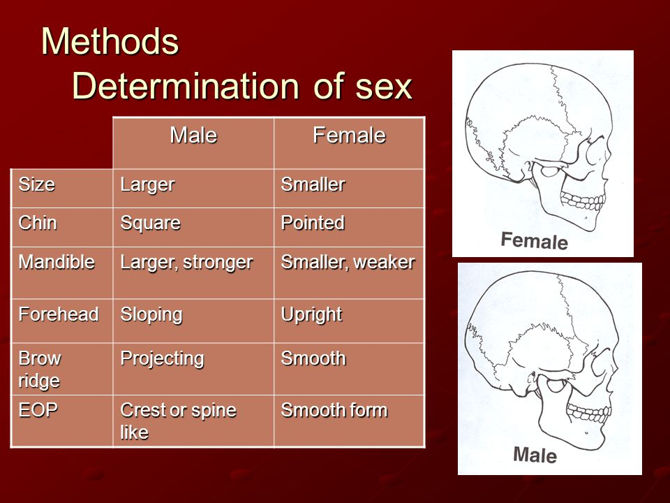 Methods Determination of sex