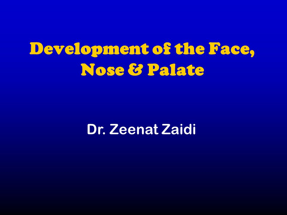 Development of the Face, Nose & Palate