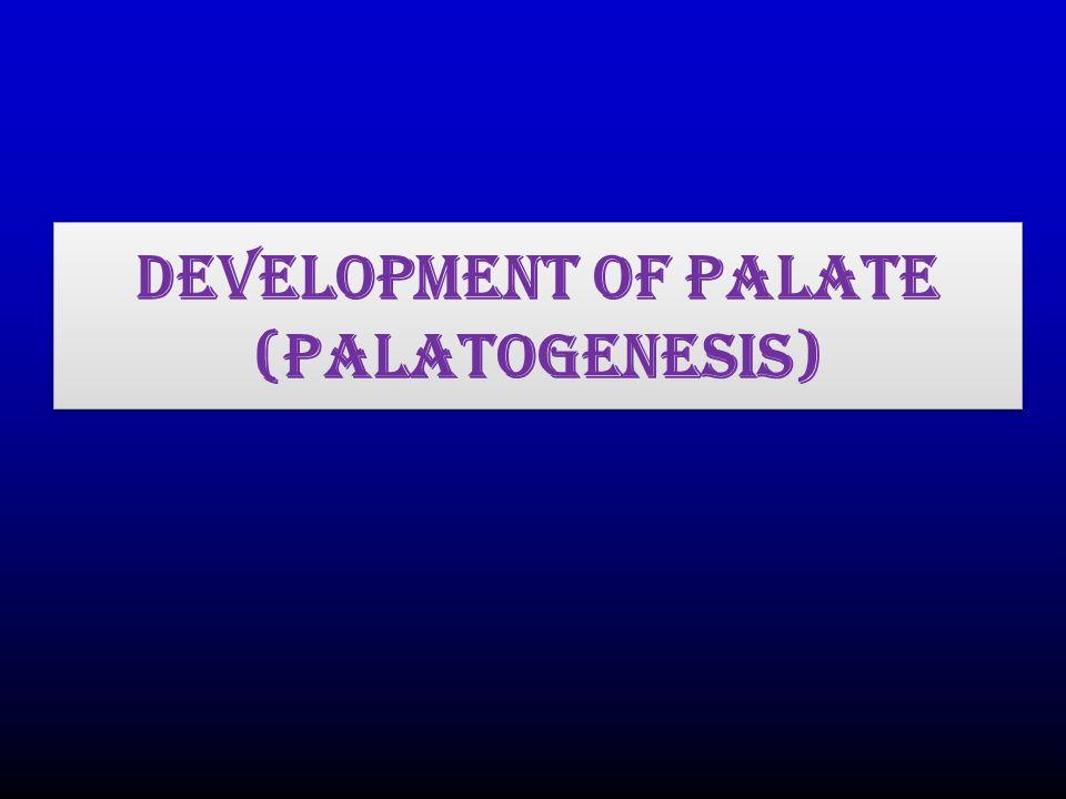 Development of Palate (Palatogenesis)