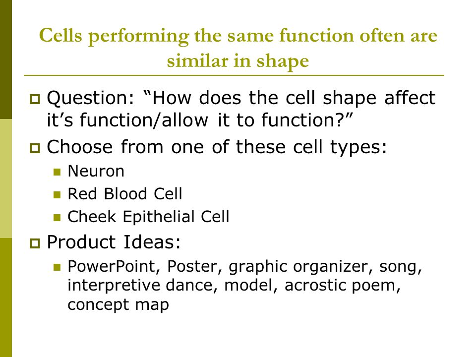 Cells performing the same function often are similar in shape