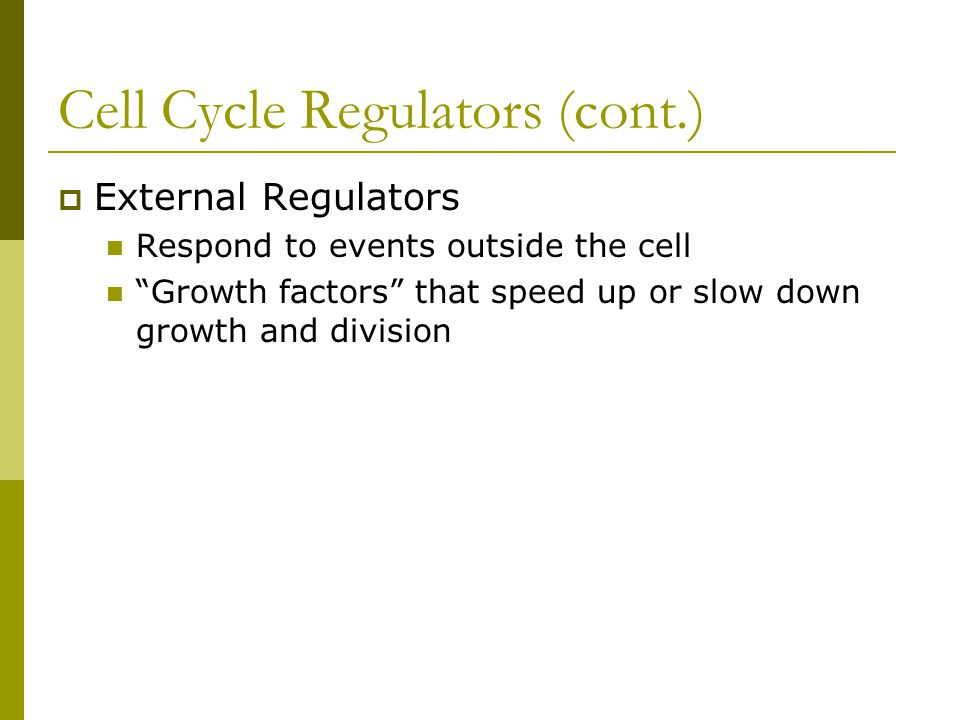Cell Cycle Regulators (cont.)