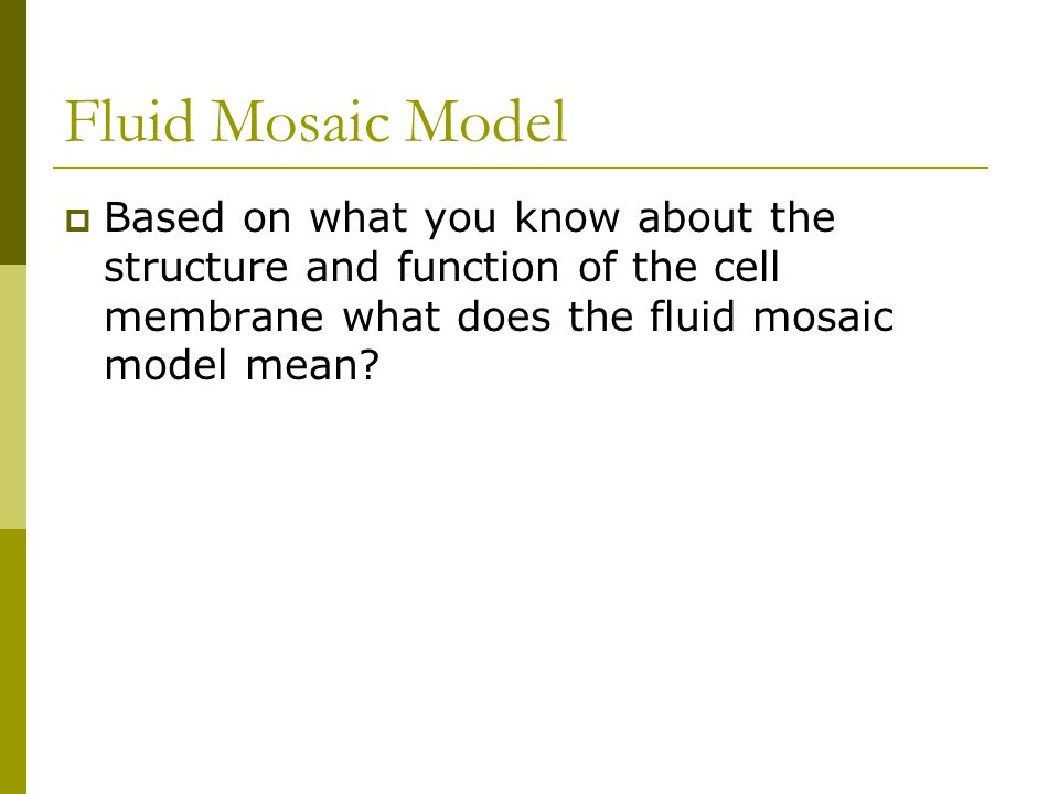 Fluid Mosaic Model Based on what you know about the structure and function of the cell membrane what does the fluid mosaic model mean
