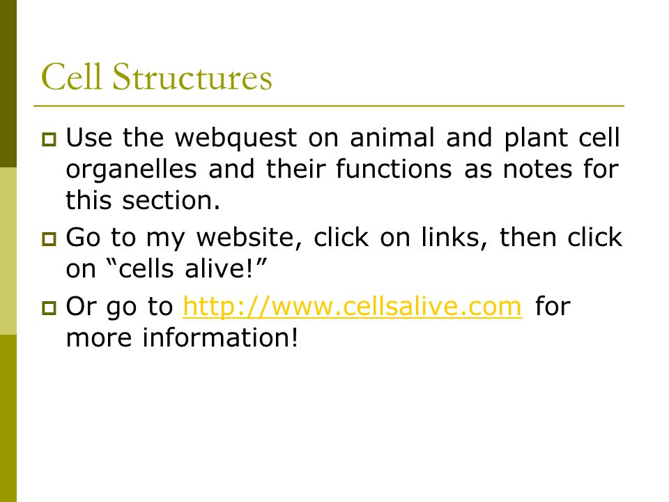 Cell Structures Use the webquest on animal and plant cell organelles and their functions as notes for this section.