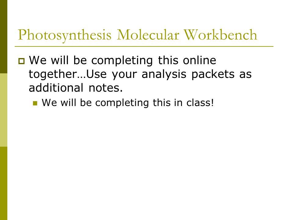 Photosynthesis Molecular Workbench