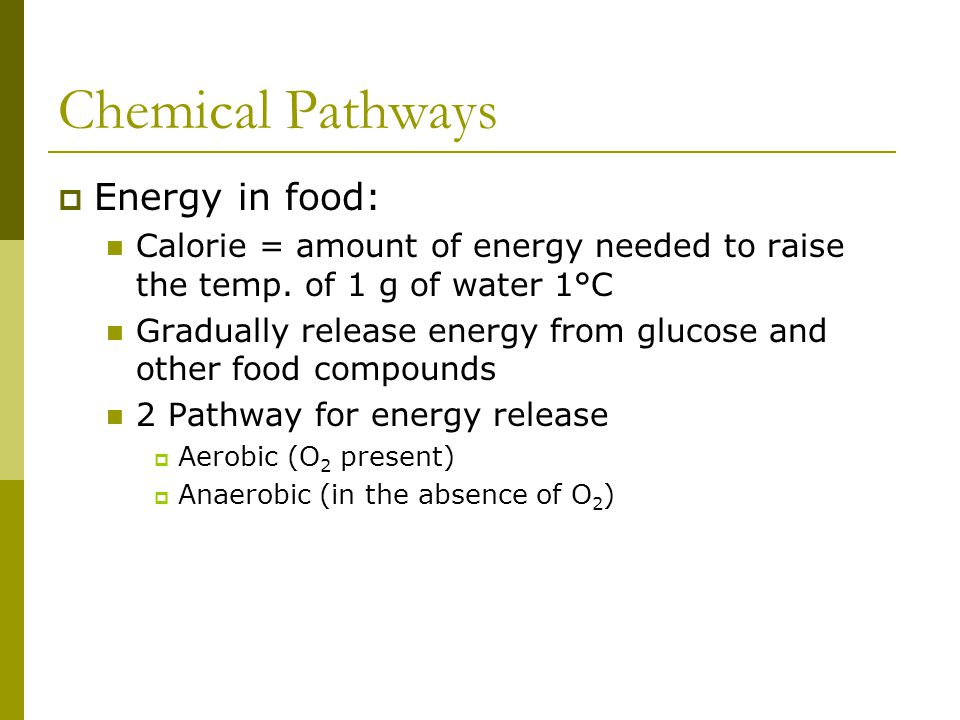 Chemical Pathways Energy in food: