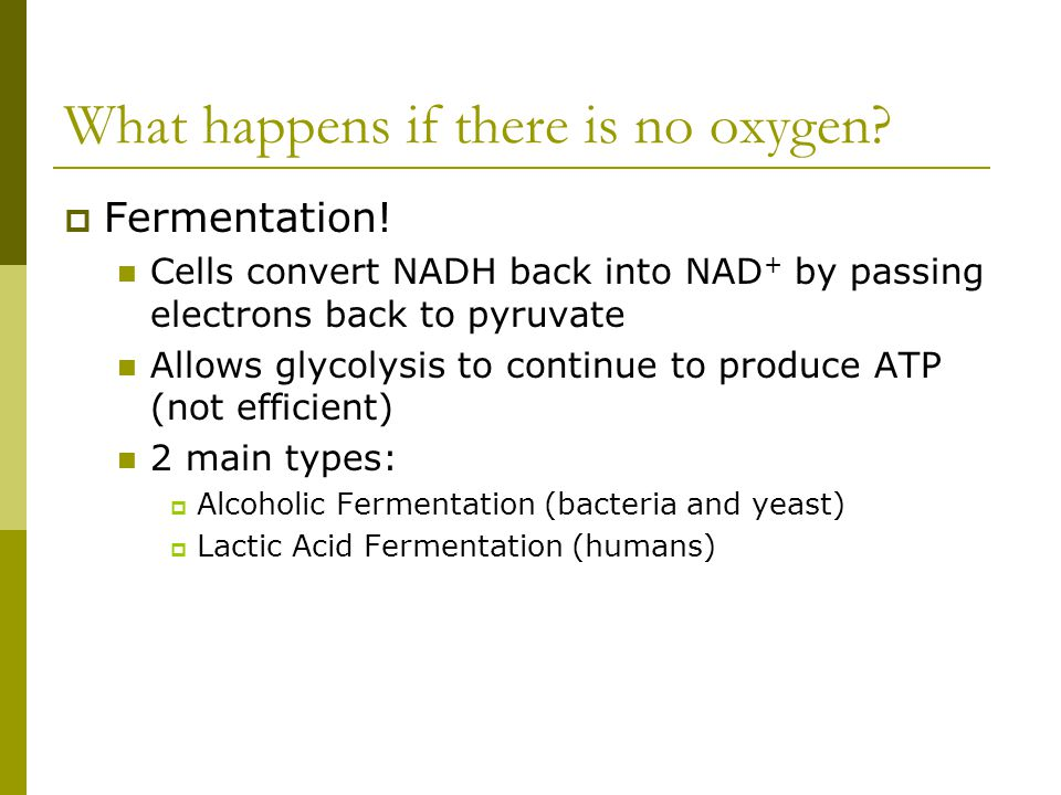 What happens if there is no oxygen