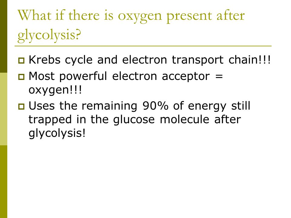 What if there is oxygen present after glycolysis