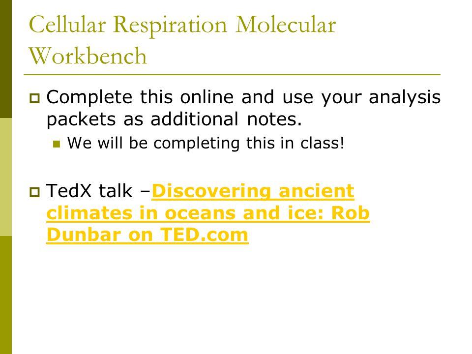 Cellular Respiration Molecular Workbench