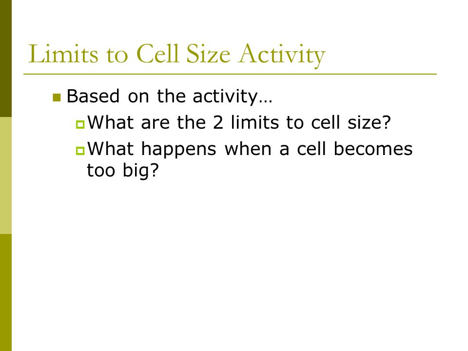 Limits to Cell Size Activity