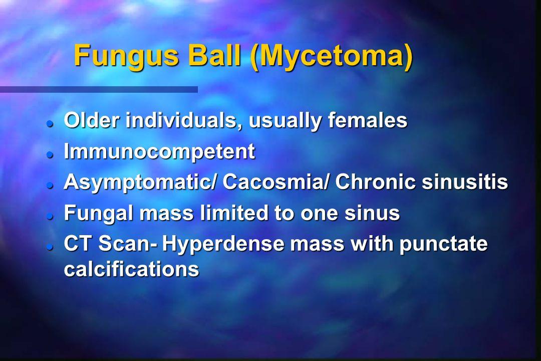 Fungus Ball (Mycetoma)
