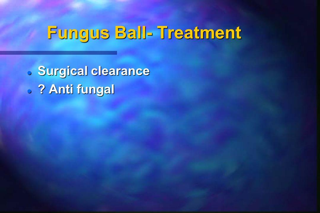 Fungus Ball- Treatment