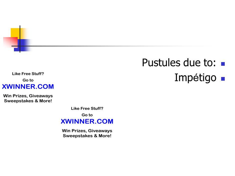 Pustules due to: Impétigo