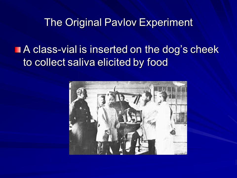 The Original Pavlov Experiment