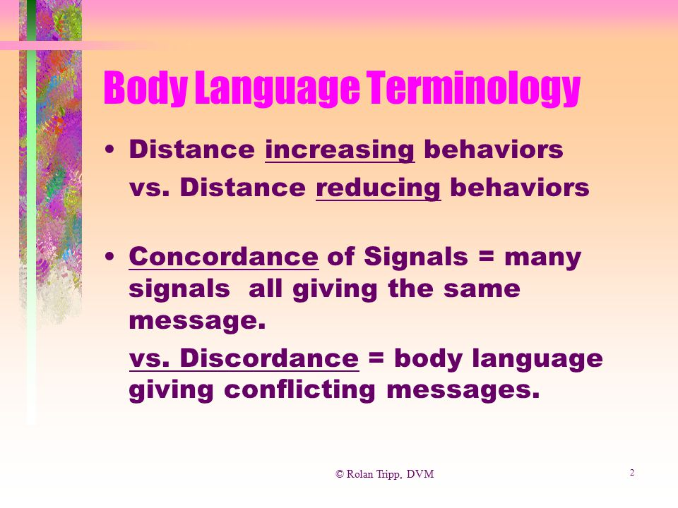 Body Language Terminology